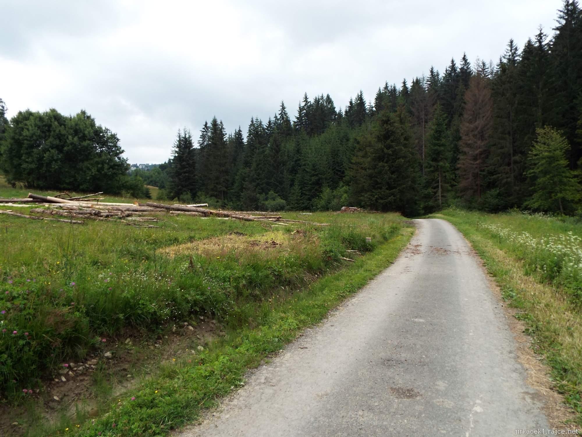 Trojmezí CZ-PL-SK - 17 - cesta na trojmezí - rovina za rozcestím na dně údolí
