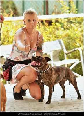 Iris Hayley ze Smiřické zahrady (Little Jack Ambassador Sun X Dakota ze Smiřické zahrady) - Feny - třída otevřená - V