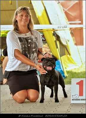 Absolute Belle of Ambassador Sun (Adwin Star Sallystaff X Dix Ambassador of Moravi Knight) - Feny - třída šampionů - V1, CAC, CACIB, BOS