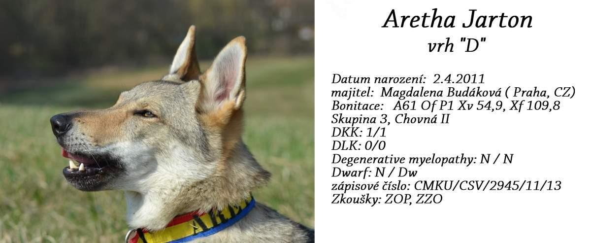 https://img32.rajce.idnes.cz/d3201/16/16417/16417253_63d74c1f2396835dc289907a91f6b8f2/images/aretha.jpg?ver=0