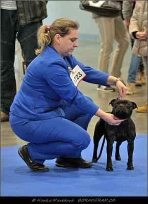 Iron First Domidar Dogs (Frisian Staff´s Final Countdown X Maya Stawka Wieksza Niz Zycie) - Feny - třída otevřená - V2, res. CAC