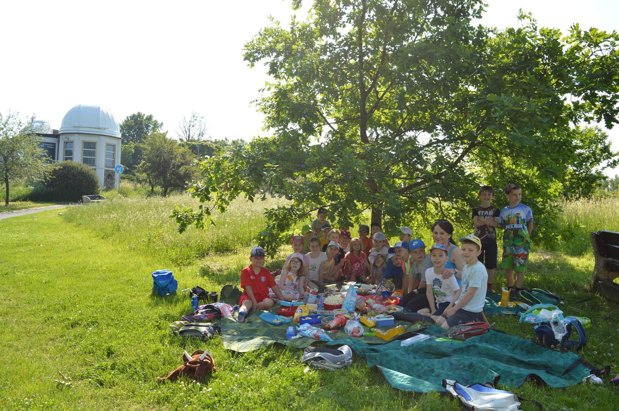 děti v přírodě na pikniku
