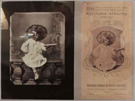 Skleněný negativ a fotka použitá jako reklama na Kolínskou cikorku. - Kolínská továrna na kávové náhražky byla založena v roce 1894 skupinou osmi podílníků v čele s Čeňkem Kříčkou, který je i autorem architektonického projektu továrny. V roce 1898 byla přeměněna na akciovou společnost pod názvem Kolínská továrna na kávové náhražky, kupecký podnik akciový, lidově zvaný podle produkce Cikorka.
