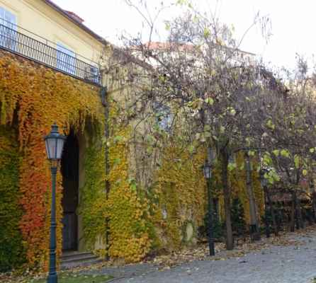 Valdštejnská 14 -  Palfyovský palác
