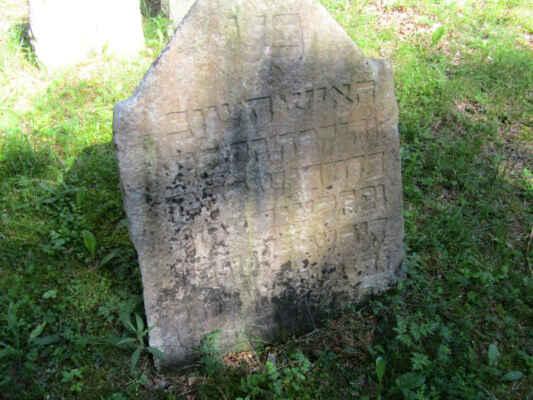 Tento židovský hřbitov z 18. století naleznete asi 1 km SZ od obce Hoštice na kraji lesa. Jeho rozloha činí asi 543 m2. Na hřbitově je dochováno přes 50 náhrobků, nejstarší čitelný náhrobek pochází z roku 1735. Židovská komunita v Hošticích přestala existovat v roce 1899.